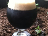 Session Oatmeal Stout: Tasting Notes
