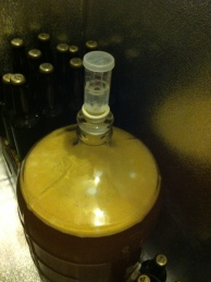 Secondary Fermentation Begins!