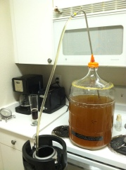 Racking the Passion Fruit Wheat to Keg