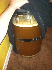 French Saison Fermentation