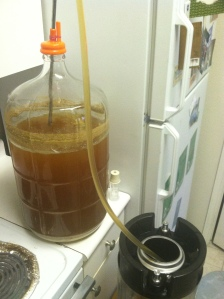 Kegging the Hoppy Saison