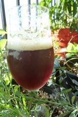 2013 Winter Solstice Ale: TastingNotes
