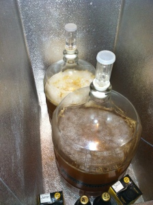 German Lager Starter Batches