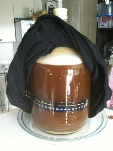 Craft A Brew Brown Fermentation
