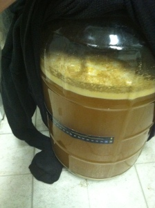 Farmhouse IPA fermentation